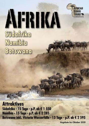 African Kombi Tours Poster
